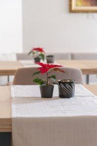 Miza z rožo