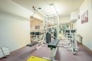 Fitnes garni hotel Miklic